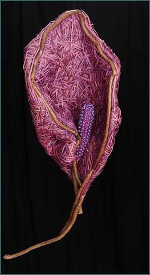 Calla Lily, a woven lily by master basket weaver Tina Puckett of Winsted, CT